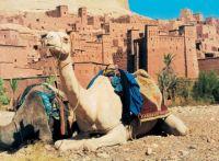 phoca_thumb_l_marokko04